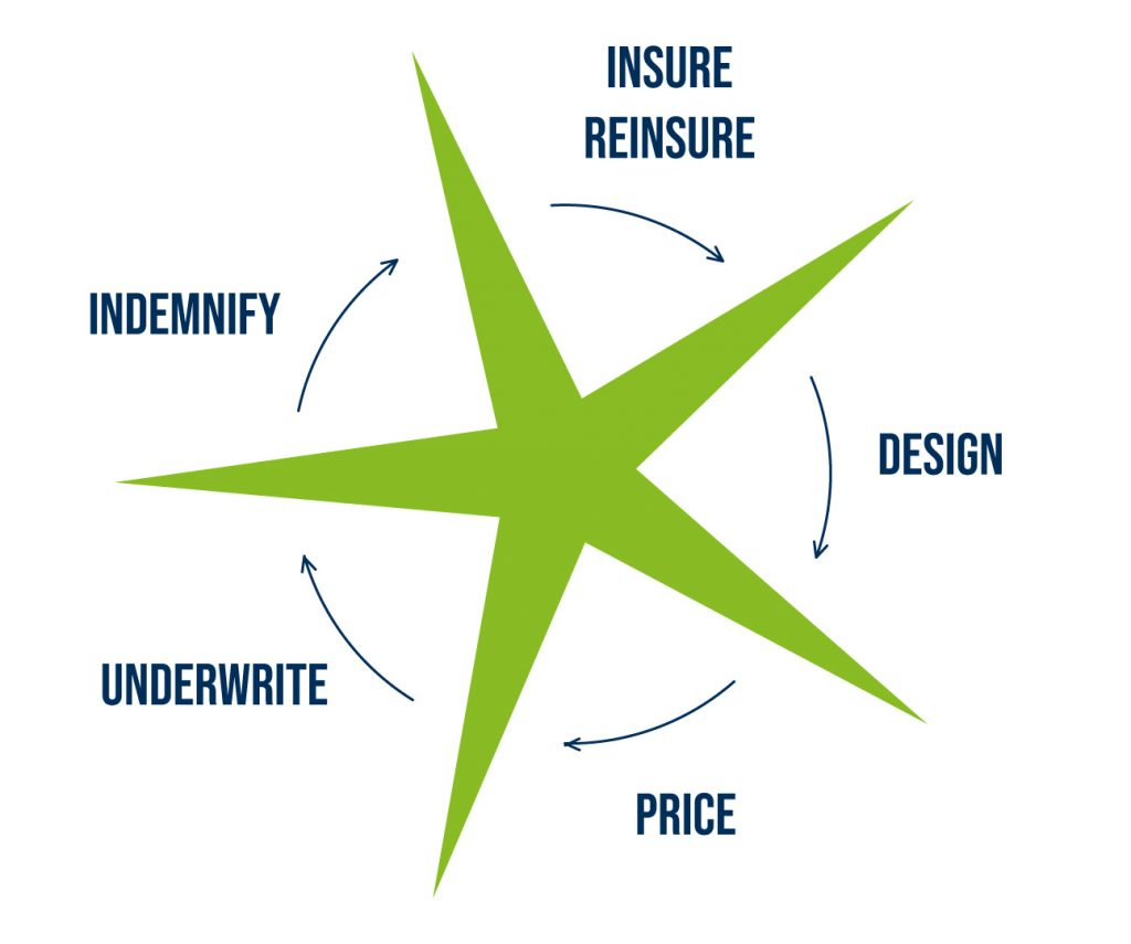 Insure Reinsure / Design / Price / Underwrite / Indemnify